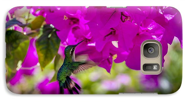 Galaxy Case featuring the photograph Hummingbird In A Garden Paradise by Phil Abrams