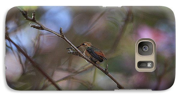 Galaxy Case featuring the photograph Hummingbird by Kevin Ashley