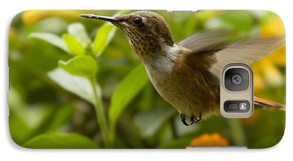 Hummingbird Looking For Food Galaxy S7 Case by Heiko Koehrer-Wagner