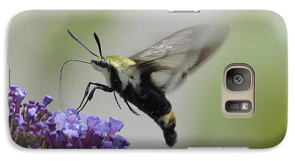 Hummingbird Moth Galaxy S7 Case