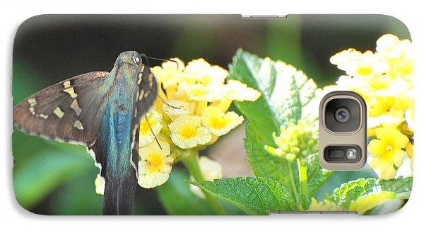 Galaxy Case featuring the photograph Hummingbird Moth On Yellow Flowers by Jodi Terracina