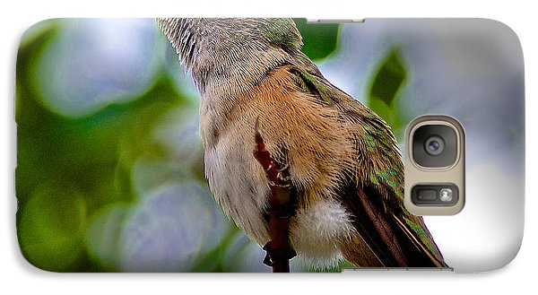 Galaxy Case featuring the photograph Hummingbird On A Branch by Stephen  Johnson