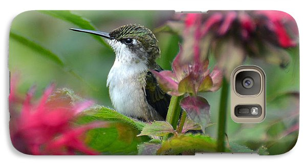 Galaxy Case featuring the photograph Hummingbird On A Leaf by Rodney Campbell