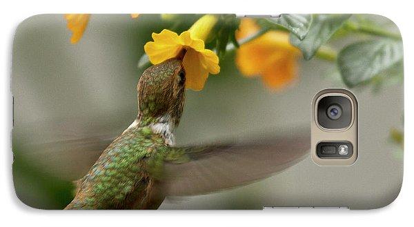 Hummingbird Sips Nectar Galaxy S7 Case