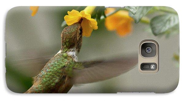 Hummingbird Sips Nectar Galaxy S7 Case by Heiko Koehrer-Wagner