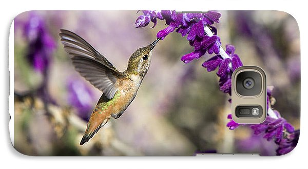 Galaxy Case featuring the photograph Hummingbird Collecting Nectar by David Millenheft
