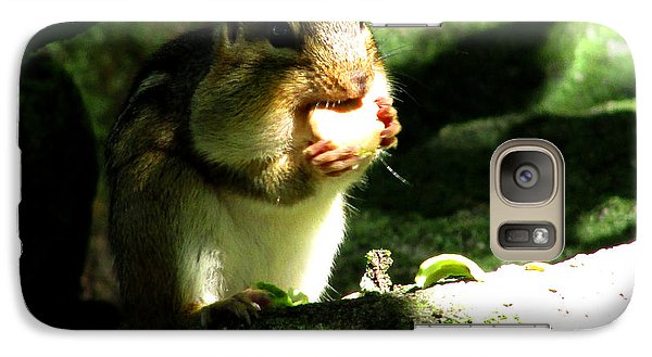 Galaxy Case featuring the photograph Hungry Hungry Chipmunk by Kimberly Mackowski