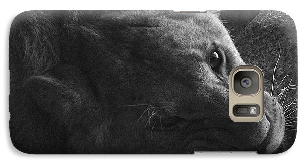Galaxy Case featuring the photograph Hungry by Simona Ghidini