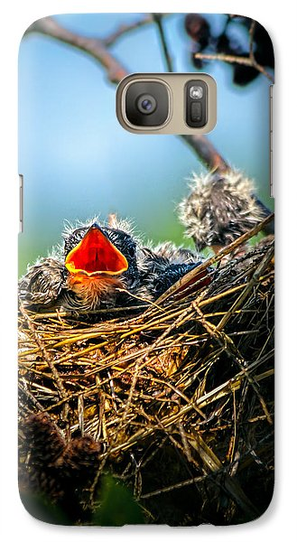Swallow Galaxy S7 Case - Hungry Tree Swallow Fledgling In Nest by Bob Orsillo