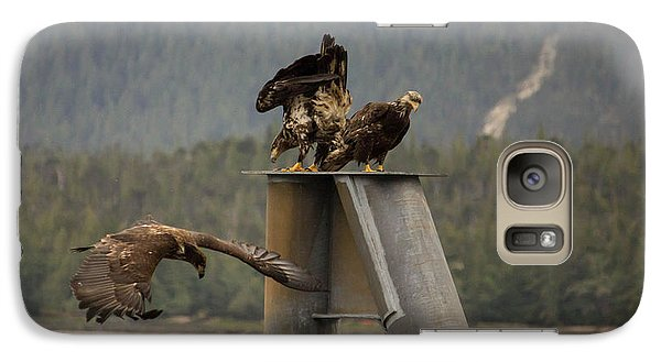 Galaxy Case featuring the photograph Hunting For Lunch by Timothy Latta