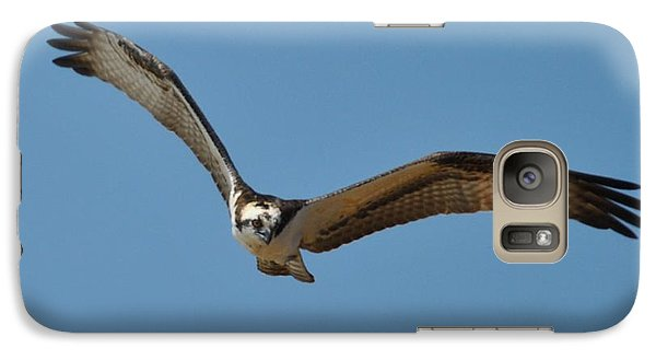 Galaxy Case featuring the photograph Hunting by Michele Kaiser