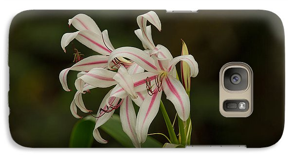 Galaxy Case featuring the photograph Hybrid Swamp Lily by Doug McPherson