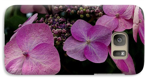 Galaxy Case featuring the photograph Hydrangea Flowers  by James C Thomas
