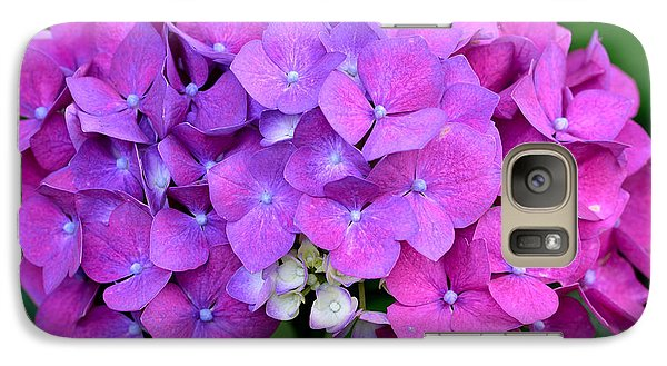 Galaxy Case featuring the photograph Hydrangea  by Kathy King