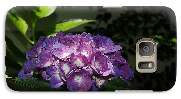 Galaxy Case featuring the photograph Hydrangea Season by Margie Avellino