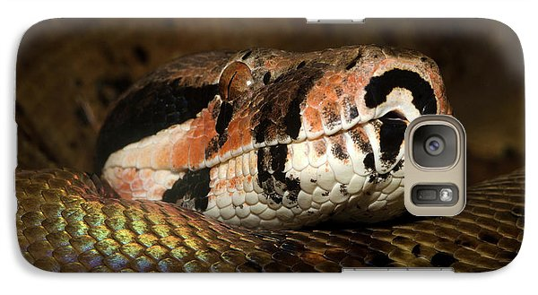 Hypo Colombian Boa Galaxy S7 Case by Nigel Downer