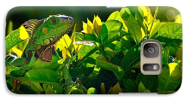 Galaxy Case featuring the photograph I Can See You by Pamela Blizzard