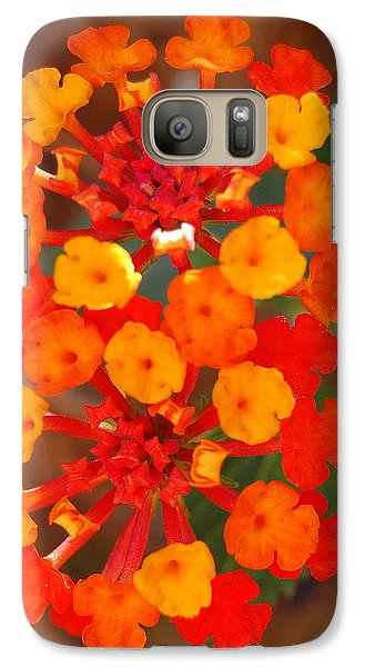 Galaxy Case featuring the photograph I Love Orange by Lew Davis