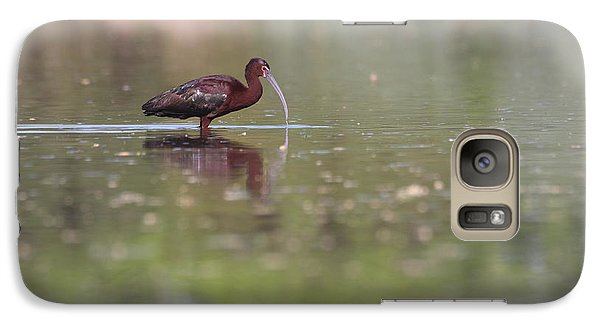 Galaxy Case featuring the photograph Ibis In The Environment by Ruth Jolly