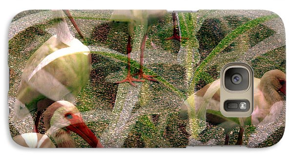 Galaxy Case featuring the photograph Ibis In The Tall Grass by Irma BACKELANT GALLERIES