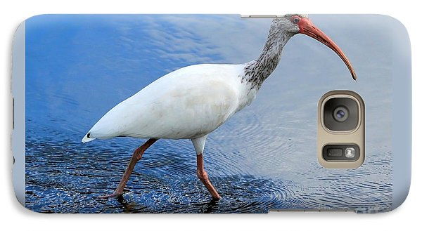 Ibis Visitor Galaxy S7 Case by Carol Groenen