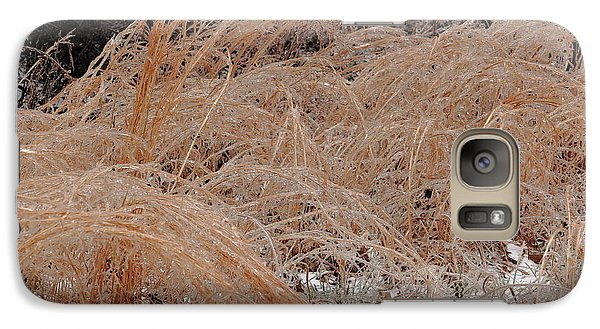 Galaxy Case featuring the photograph Ice And Dry Grass by Daniel Reed
