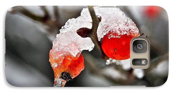 Galaxy Case featuring the photograph Ice Berries by Crystal Hoeveler