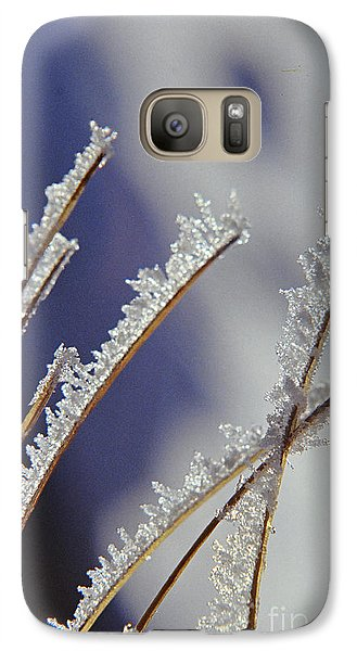 Galaxy Case featuring the photograph Ice Crystals On Fireweed Fairbanks  Alaska By Pat Hathaway 1969 by California Views Mr Pat Hathaway Archives