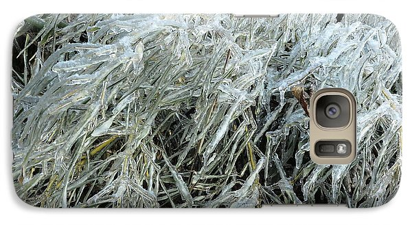 Galaxy Case featuring the photograph Ice On Bamboo Leaves by Daniel Reed