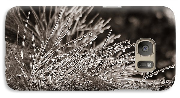 Galaxy Case featuring the photograph Ice On Pine by Patricia Schaefer