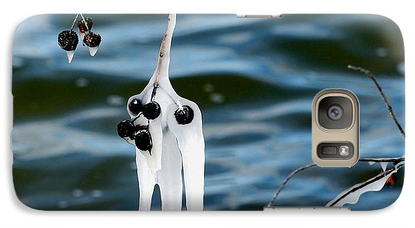 Galaxy Case featuring the photograph Ice On Seed Pods by Linda Cox