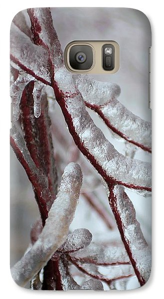 Galaxy Case featuring the photograph Ice On Tree  by Douglas Pike