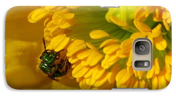 Galaxy Case featuring the photograph Iceland Poppy Pollination by J McCombie