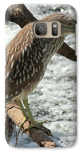 Galaxy Case featuring the photograph Immature Night Heron by Kenny Glotfelty