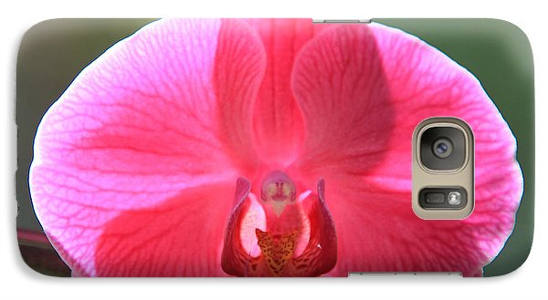 Galaxy Case featuring the photograph In A Class By Herself by Jeanette French