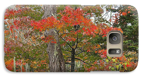 Galaxy Case featuring the photograph In Full Color by Susan Crossman Buscho