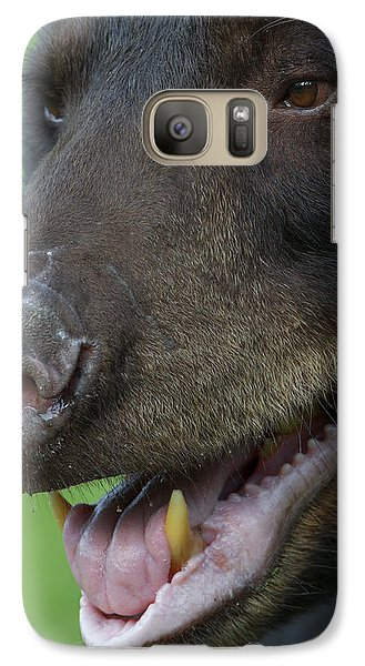 Galaxy Case featuring the photograph In Need Of Some Pepsodent by Gerry Sibell