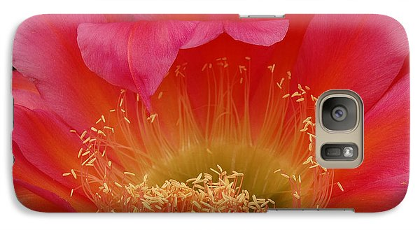 Galaxy Case featuring the photograph In The Pink by Vivian Christopher