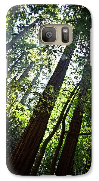 In The Woods Galaxy S7 Case by Ana V Ramirez