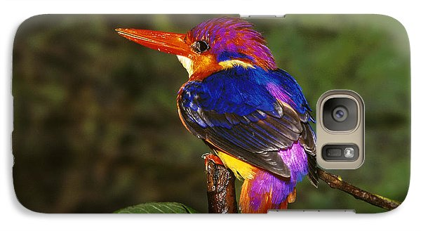 India Three Toed Kingfisher Galaxy Case by Anonymous
