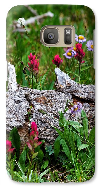 Galaxy Case featuring the photograph Indian Paintbrush by Ronda Kimbrow