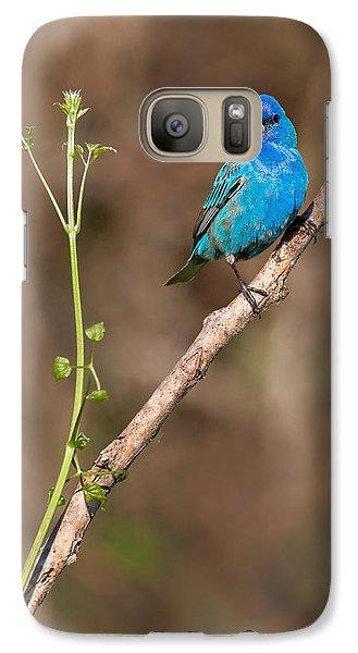Indigo Bunting Portrait Galaxy S7 Case