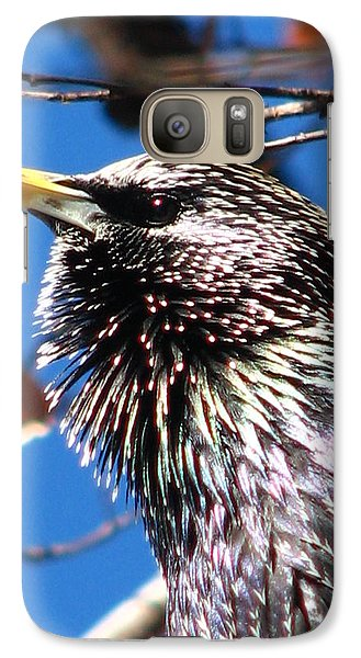 Galaxy Case featuring the photograph Intent - Bird Body Language by Cleaster Cotton