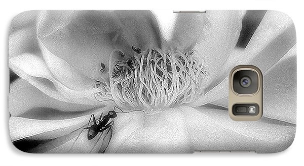 Galaxy Case featuring the photograph Intrigue Rose In Black And White by Louise Kumpf