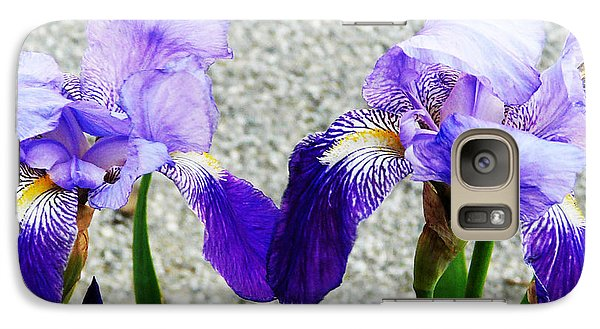 Galaxy Case featuring the photograph Irises by Jasna Dragun