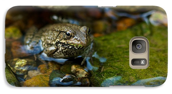 Galaxy Case featuring the photograph Is There A Prince In There? - Frog On Rocks by Jane Eleanor Nicholas