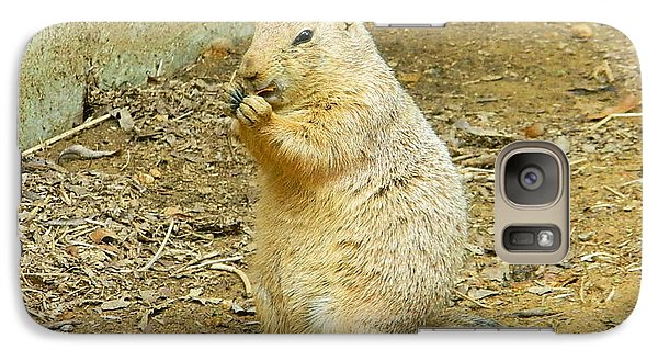 Galaxy Case featuring the photograph It's Chow Time by Emmy Marie Vickers