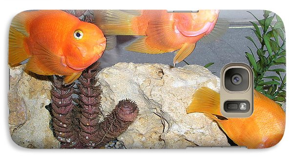 Galaxy Case featuring the photograph It's Not Polite To Stare by Bev Conover