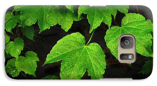 Galaxy Case featuring the photograph Ivy by Tom Brickhouse