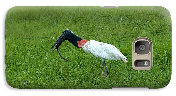 Jabiru Stork Swallowing An Eel Galaxy S7 Case by Gregory G. Dimijian, M.D.